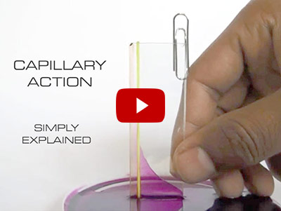 Capillary rise - thinner tube means higher the rise